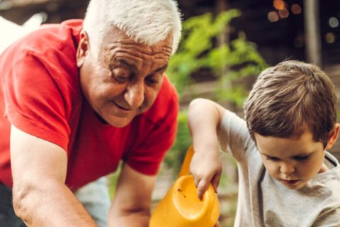 Grandson helps his grandfather plant in the garden
